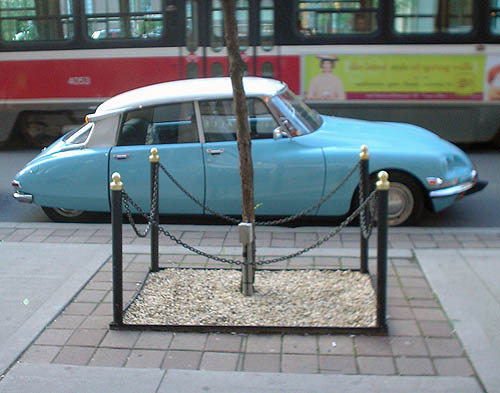 Baby-blue Citroën DS with white roof sits parked at curb between enclosed tree on sidewalk and passing streetcar