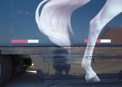 Navy-blue side and skirt of a trailer are emblazoned with reflectors and a painting of the leg and tail of a white horse
