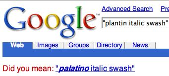 Google spelling correction asking 'Did you mean: palatino italic swash'