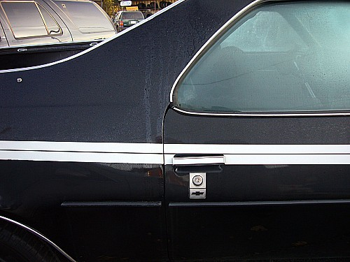 Black dew-covered El Camino has chrome stripe across the beltline and a slightly broken door handle