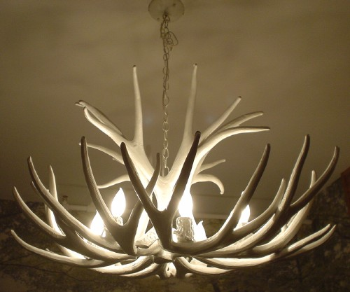 Chandelier resembles a set of white antlers
