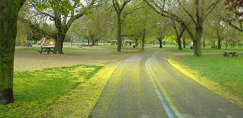 Green lawn alongside paved pathway through parkland is dappled with bright-green tree buds