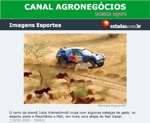 Screenshot from Brazilian site shows a heavily-decorated Volkswagen Toureg driving next to a desert road as flat-looking cattle gallop alongside
