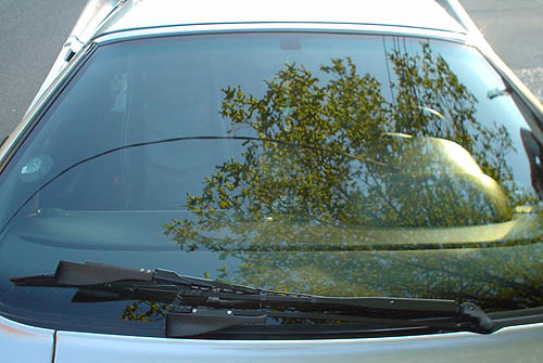 Car windshield has a single large wiper arm hinged at the right and reflects green tree branches