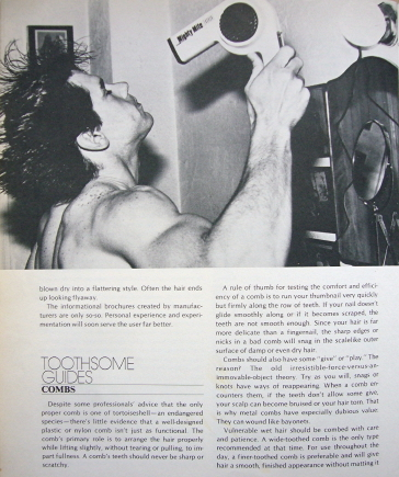 Double-page spread has headline TOOTHSOME GUIDES and shows a muscular freckled man blow-drying his hair