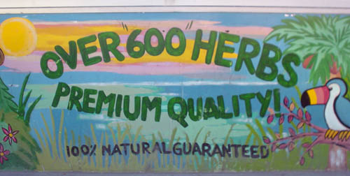 """Hand-lettered sign shows a toucan on a tree branch in a glade at sunset and the words OVER """"600"""" HERBS PREMIUM QUALITY!"""