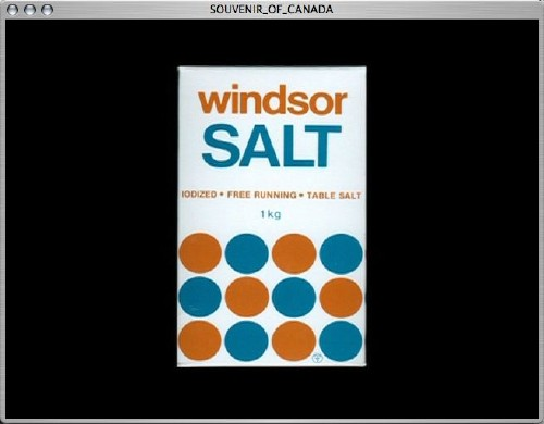 windsor SALT package, with a dozen bronze and teal circles arranged on the bottom half