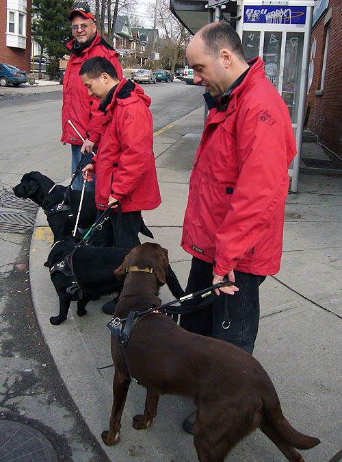 Three men in matching red jackets stand with guide dogs at a curb. One guy, in a baseball cap, looks our way