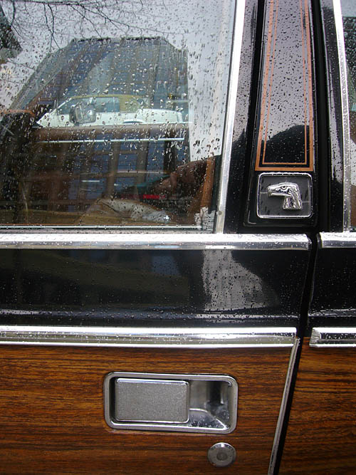 Rain-dappled woodgrain car door, window, B-pillar with eagle's head