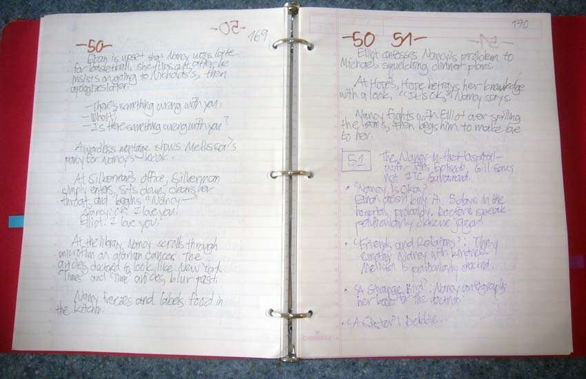Double-page spread of handwritten notes – in two pen colours, on lined paper – in a binder