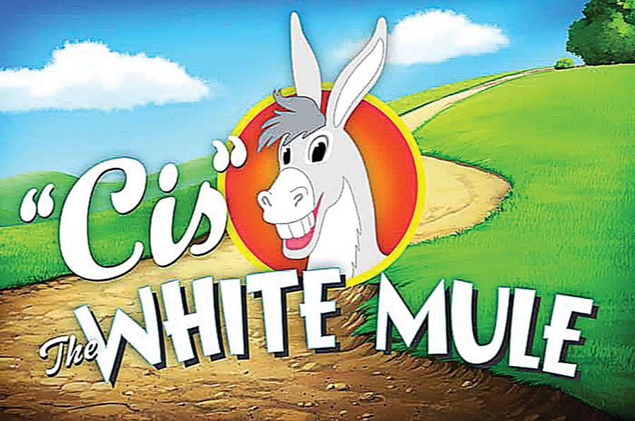 """Cis"" the White Mule"