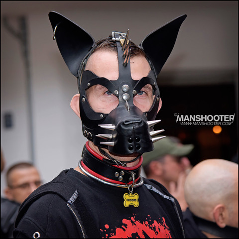 Man in pup hood with spikes on either side of muzzle but uncovered eyes, upper cheeks, forehead