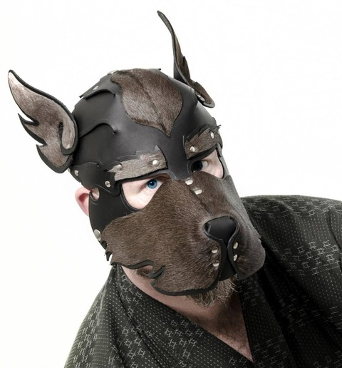 Full-face pup hood with only blue eyes, some whispers, eartips visible