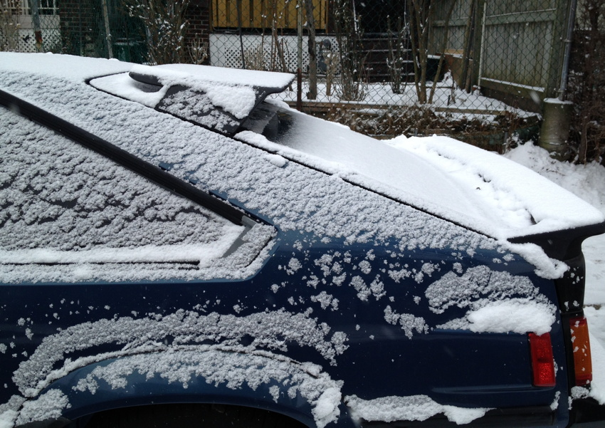 Hindquarters of a snow-covered blue Supra